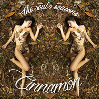 Cinnamon - The Soul's Seasons