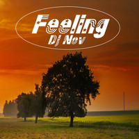 DJ Nov - Feeling