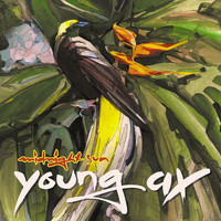 Young Ax - Midnight Sun