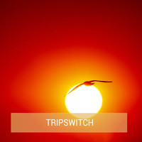 Tripswitch - Bones Single