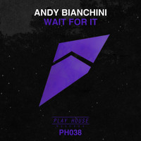 Andy Bianchini - Wait for It