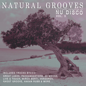 Various Artists - Natural Grooves Finest Selection of NU DISCO, Vol. 3