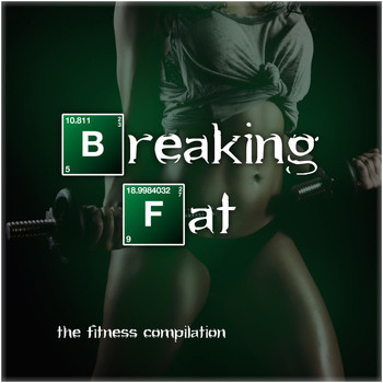 Various Artists - Breaking Fat - The Fitness Compilation