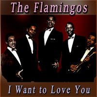 The Flamingos - I Want to Love You
