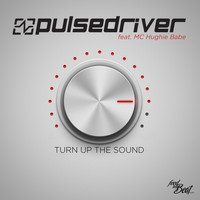 Pulsedriver - Turn up the Sound