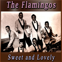 The Flamingos - Sweet and Lovely