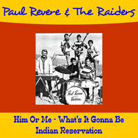 Paul Revere & The Raiders - Him or Me - What's It Gonna Be