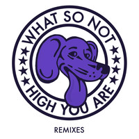 What So Not - High You Are (Remixes)