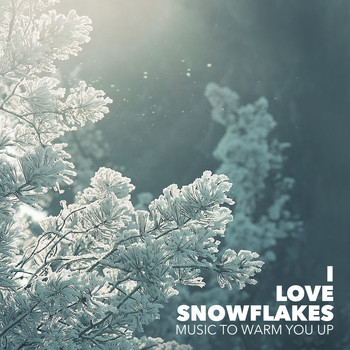 Various Artists - I Love Snowflakes