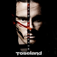 Toseland - Hearts and Bones