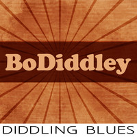 Bo Diddley - Diddling Blues
