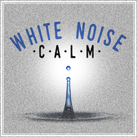 White Noise Research - White Noise: Calm