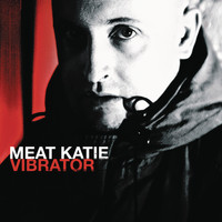 Meat Katie - Vibrator (Continuous DJ Mix by Meat Katie)