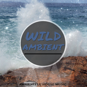 Various Artists - Wild Ambient, Vol. 1 (Finest in Electronic Chill Music)