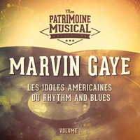 Marvin Gaye - Les idoles américaines du Rhythm and Blues : Marvin Gaye, Vol. 1