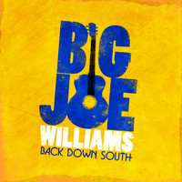 Big Joe Williams - Back Down South