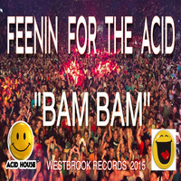 Bam Bam - Feenin For The Acid (Chris Westbrook Club Mix)