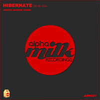 Hibernate - On To You (Dmitry Molosh Remix)