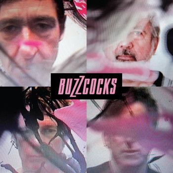 Buzzcocks - In the Back