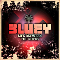 Bluey - Life Between the Notes