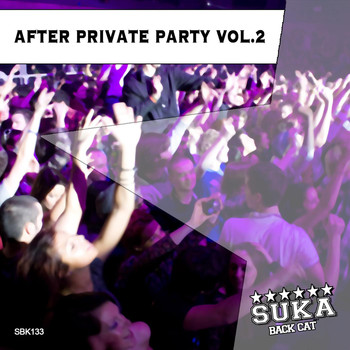 Various Artists - After Private Party, Vol. 2