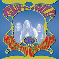 Gov't Mule - Live at the Roseland Ballroom