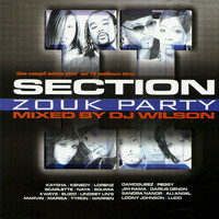 DJ Wilson - Section Zouk Party