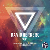 David Herrero - What