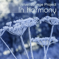 Velvet Lounge Project - In Harmony