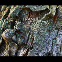 Frank C & Gianluca Catra - That Summer