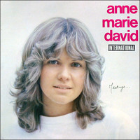 Anne Marie David - Meetings