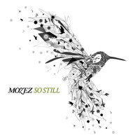Mozez - So Still