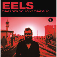 Eels - That Look You Gave That Guy