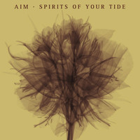 Aim - Spirits of Your Tide