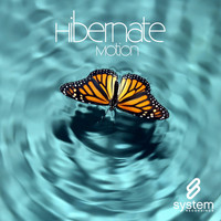 Hibernate - Motion
