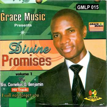 Divine Promises - Volume 1