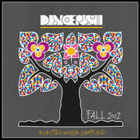 Meital De Razon - Dancepush Electro House Sampler (Fall 2012)