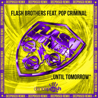 Flash Brothers - Unti Tomorrow (Deepdisco Remix)