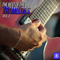 The Tremeloes - The Best of The Tremeloes, Vol. 2