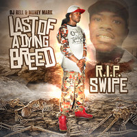 Money Mark - Last of a Dying Breed (Explicit)