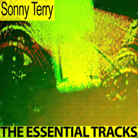 Sonny Terry - The Essential Tracks