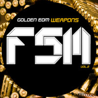 Jordan Rivera - Golden EDM Weapons, Vol. 2