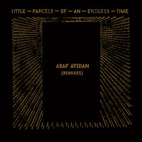 Asaf Avidan - Little Parcels Of An Endless Time Remixes