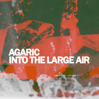Agaric - Into the Large Air
