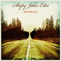 Sleepy John Estes - Need More Blues