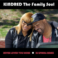 Kindred the Family Soul - Never Loved You More (DJ Spinna Remix)