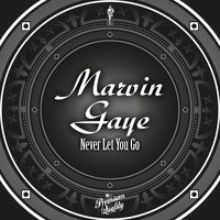 Marvin Gaye - Never Let You Go