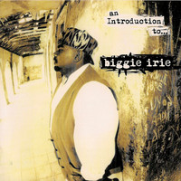 Biggie Irie - An Introduction To…biggie Irie