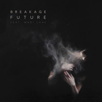 Breakage - Future