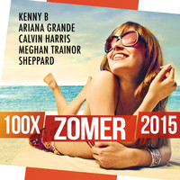 Various Artists - 100x Zomer 2015 (Explicit)